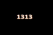 1313 Taxi
